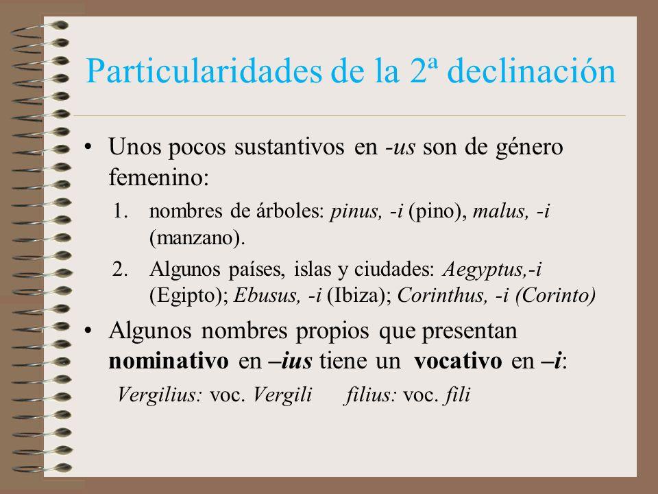 Particularidades de la 2ª declinación