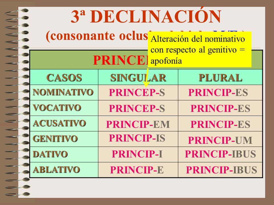 3ª DECLINACIÓN (consonante oclusiva labial –M/F-)