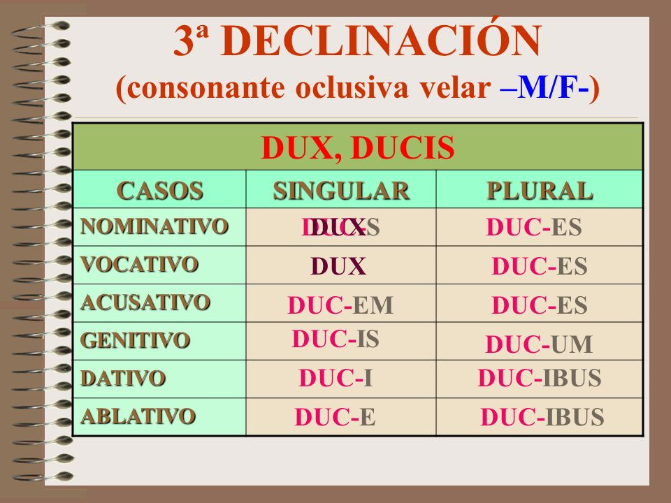 3ª DECLINACIÓN (consonante oclusiva velar –M/F-)