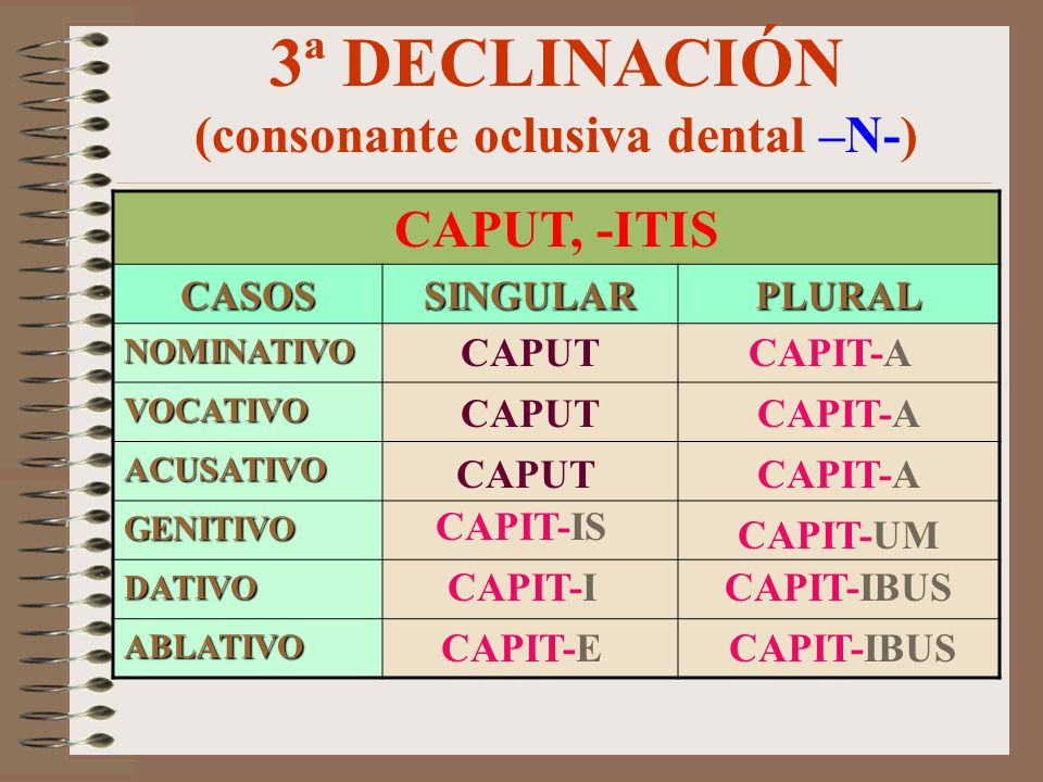 3ª DECLINACIÓN (consonante oclusiva dental –N-)