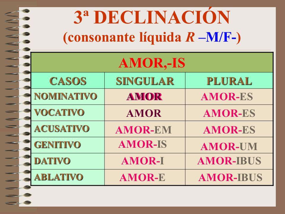 3ª DECLINACIÓN (consonante líquida R –M/F-)