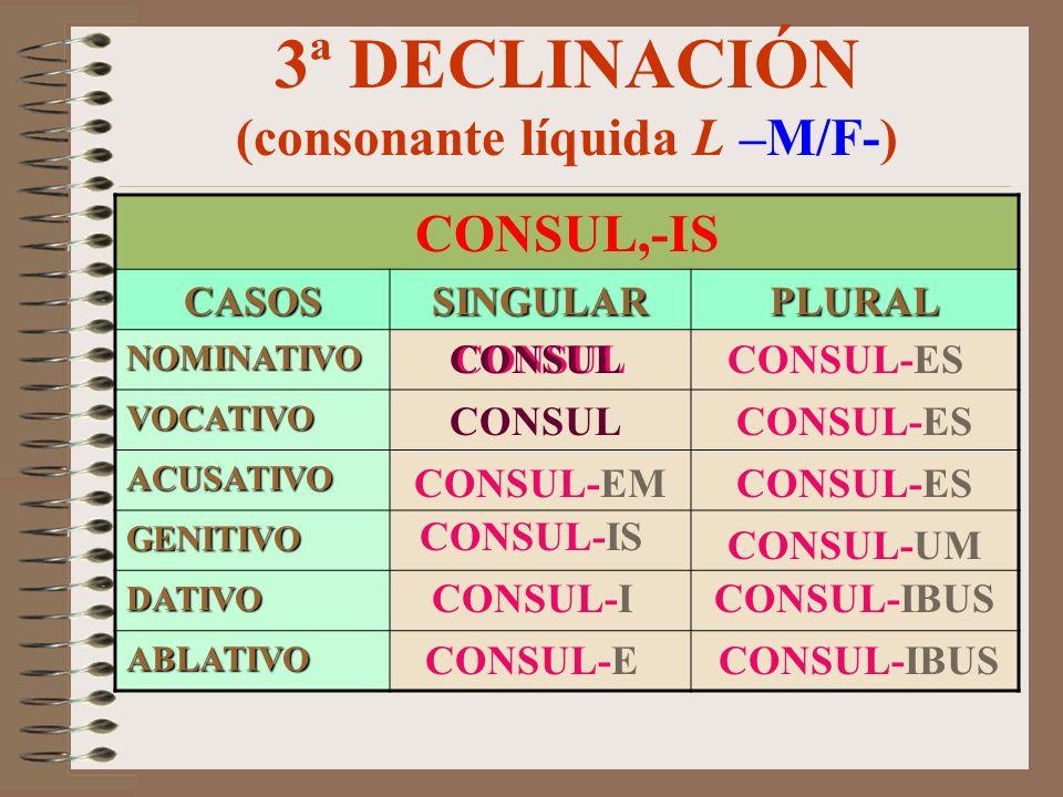 3ª DECLINACIÓN (consonante líquida L –M/F-)