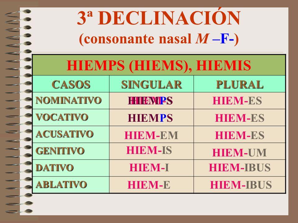 3ª DECLINACIÓN (consonante nasal M –F-)