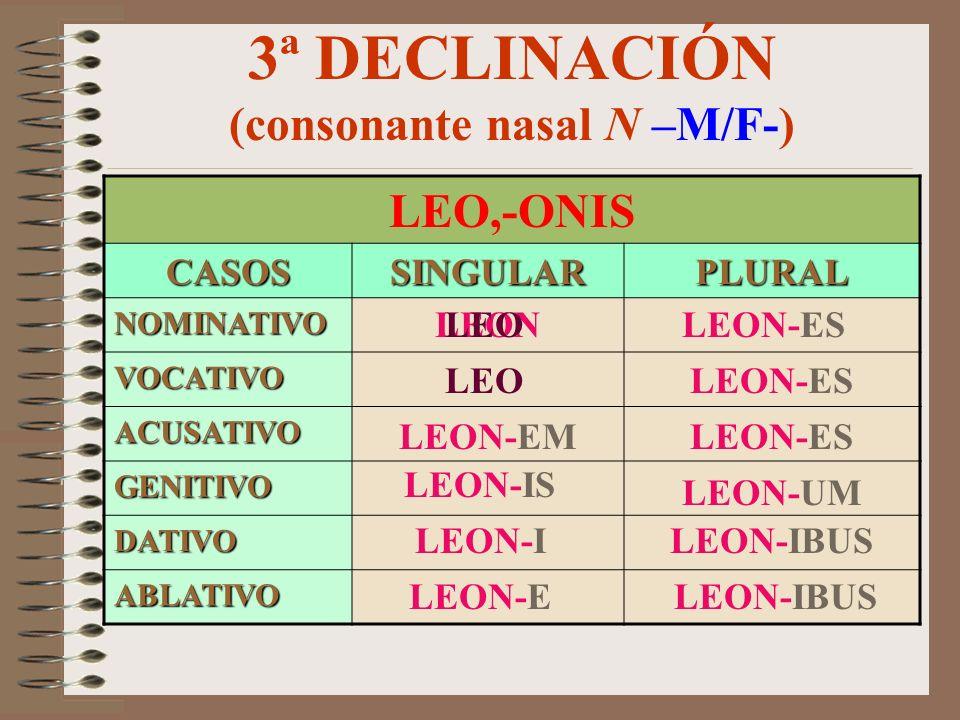 3ª DECLINACIÓN (consonante nasal N –M/F-)