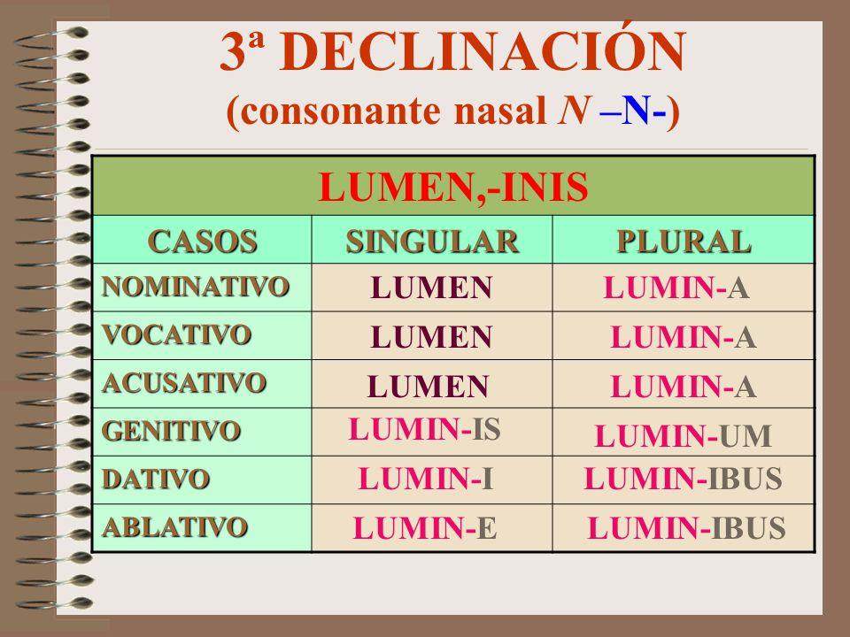 3ª DECLINACIÓN (consonante nasal N –N-)