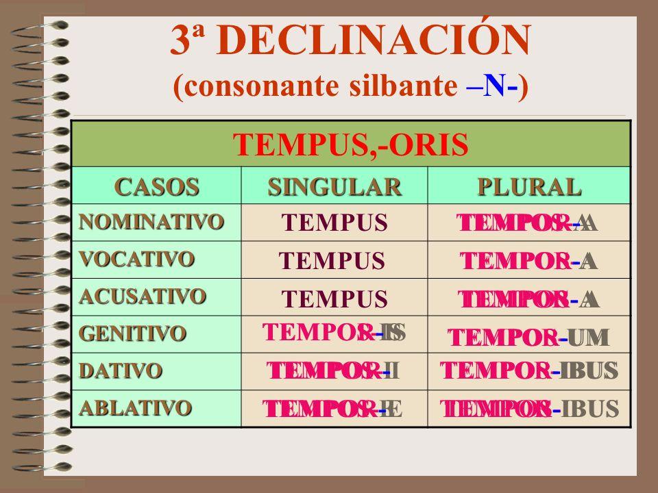 3ª DECLINACIÓN (consonante silbante –N-)