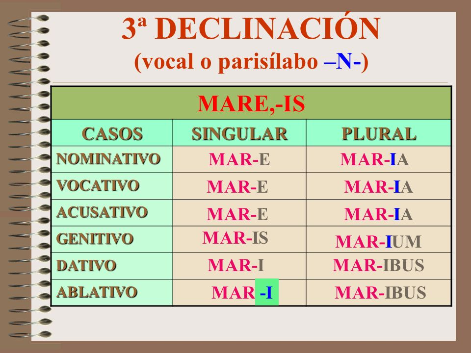 3ª DECLINACIÓN (vocal o parisílabo –N-)