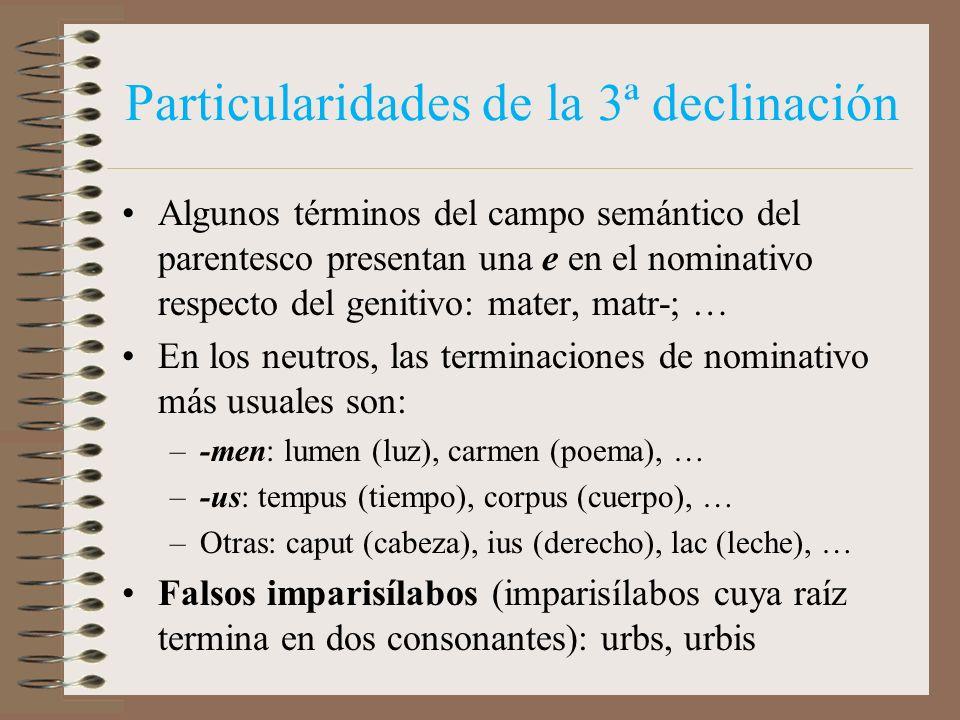 Particularidades de la 3ª declinación