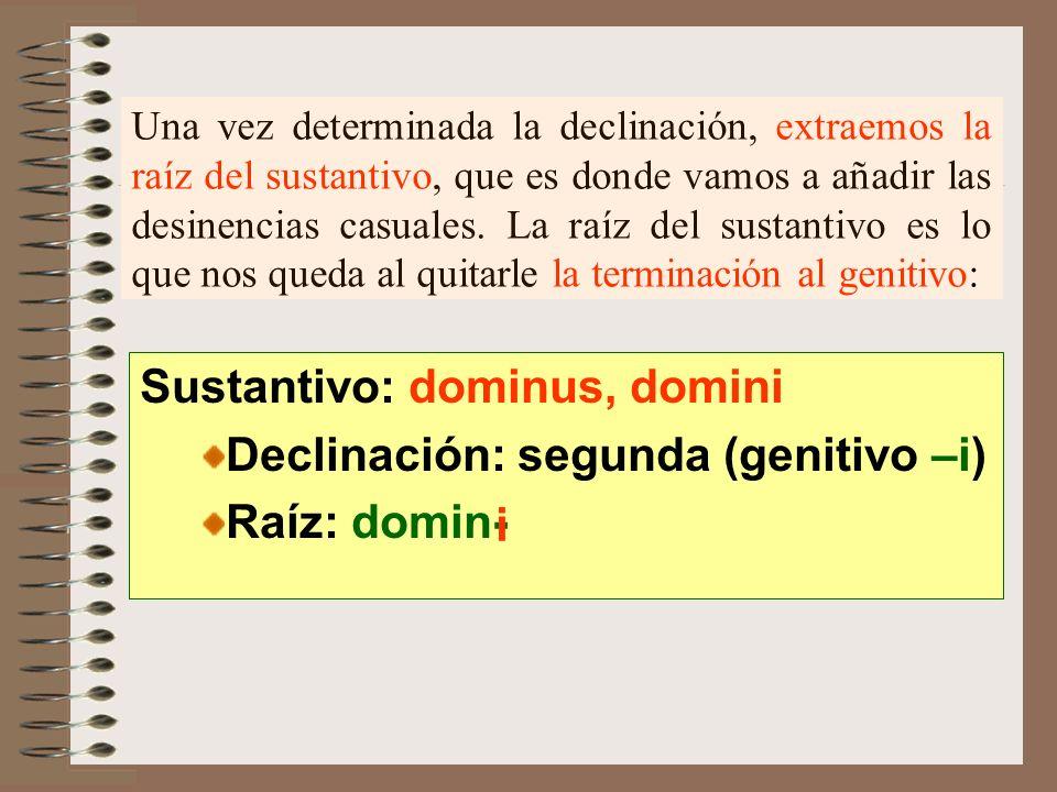 Sustantivo: dominus, domini Declinación: segunda (genitivo –i)