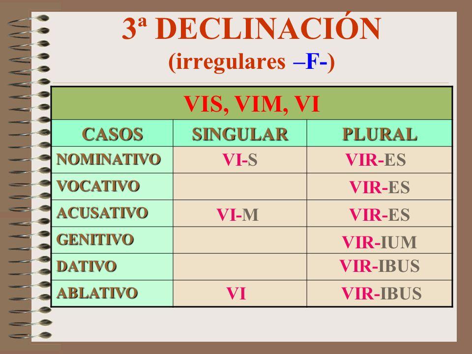 3ª DECLINACIÓN (irregulares –F-)