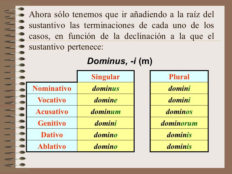 Ahora sólo tenemos que ir añadiendo a la raíz del sustantivo las terminaciones de cada uno de los casos, en función de la declinación a la que el sustantivo pertenece: