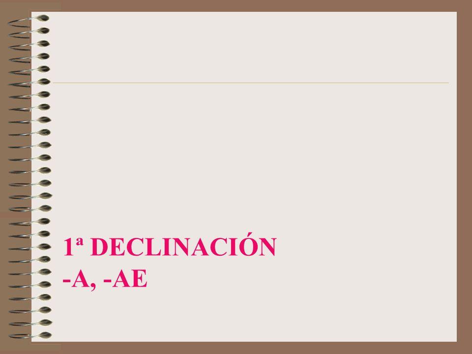 1ª Declinación -a, -ae