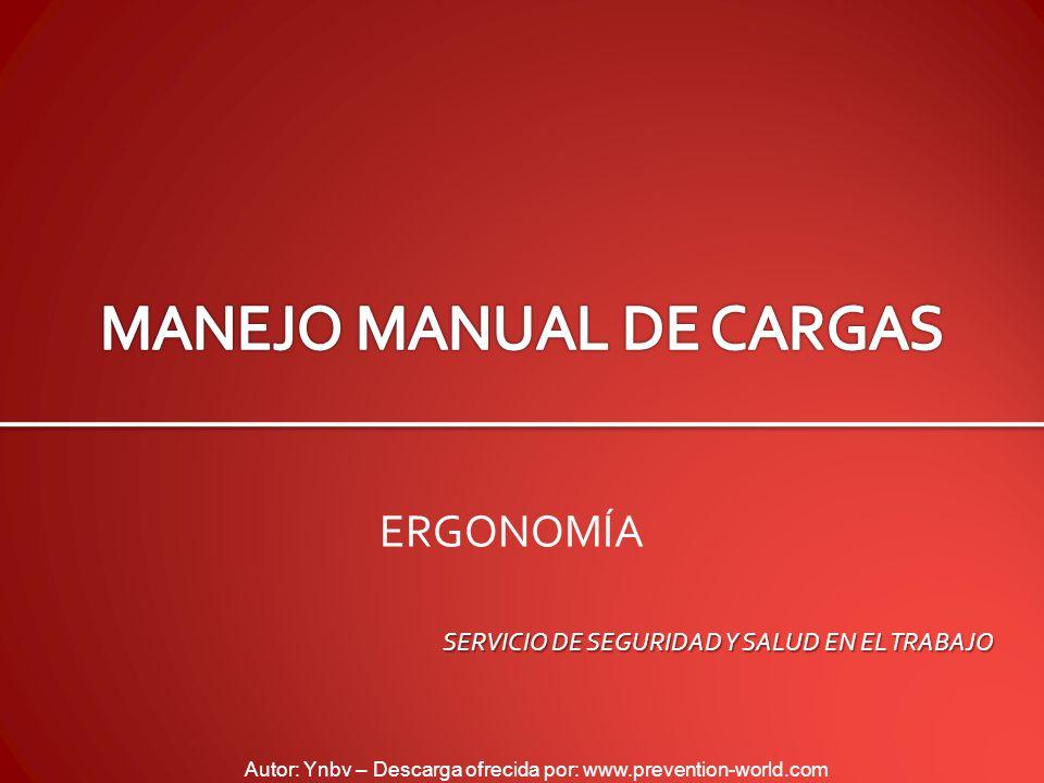 MANEJO MANUAL DE CARGAS