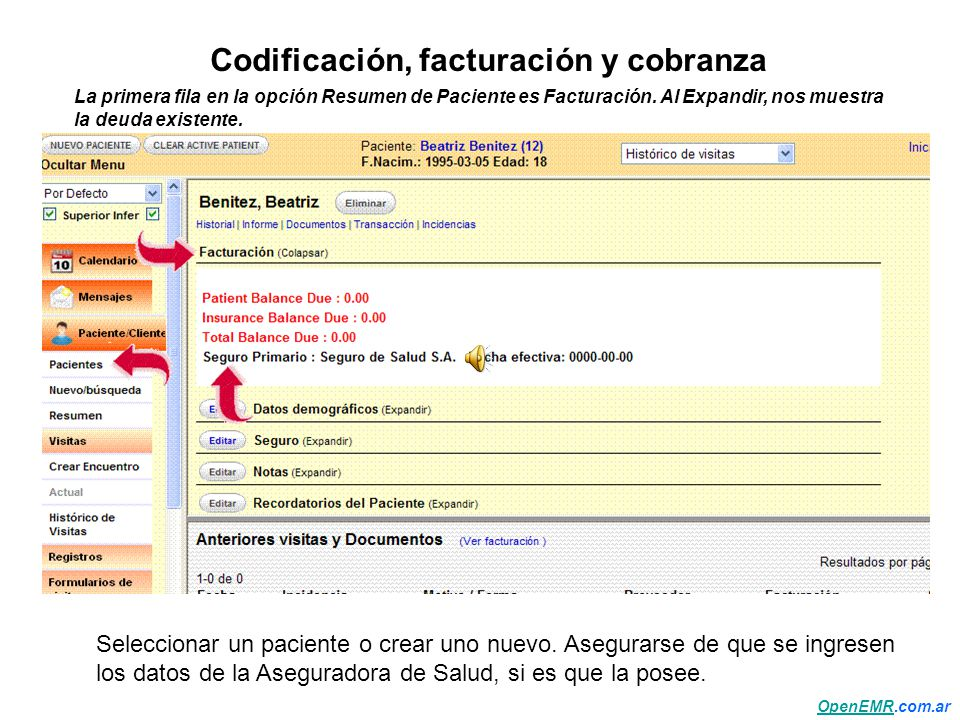 Bonito Facturación Médica Y Codificación Patrón - Anatomía de Las ...