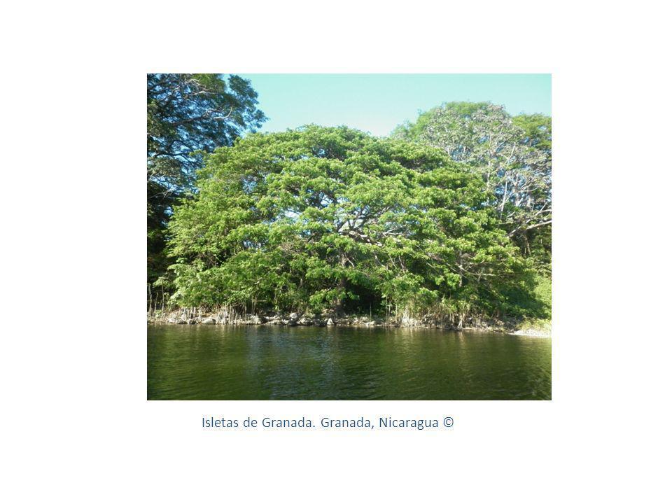 Isletas de Granada. Granada, Nicaragua ©