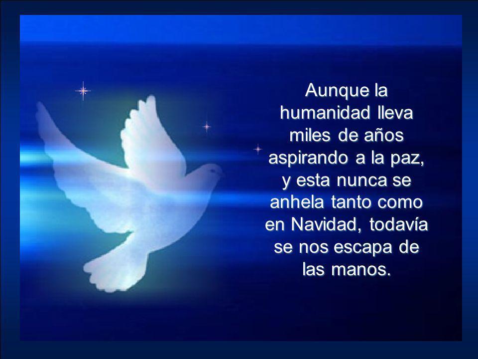 Aunque la humanidad lleva miles de años aspirando a la paz, y esta nunca se anhela tanto como en Navidad, todavía se nos escapa de las manos.