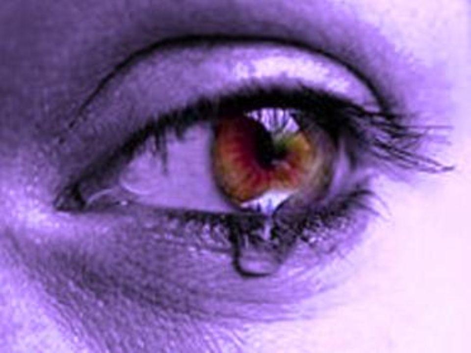 Que donde moren el llanto y la desesperación