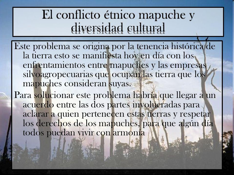 El conflicto étnico mapuche y diversidad cultural