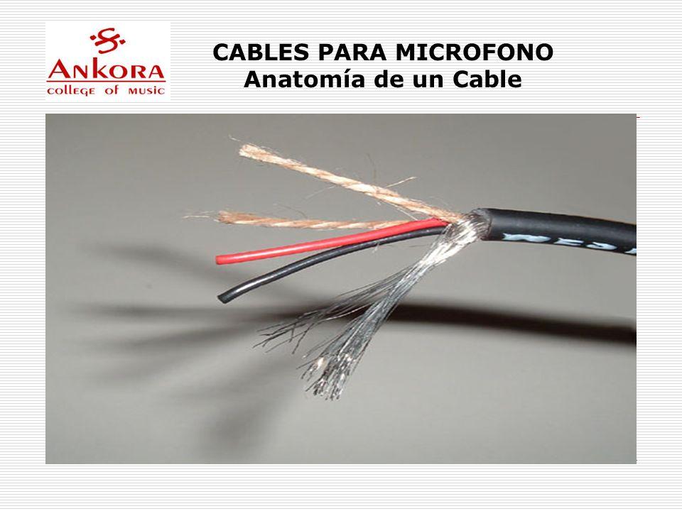 CABLES PARA MICROFONO Anatomía de un Cable
