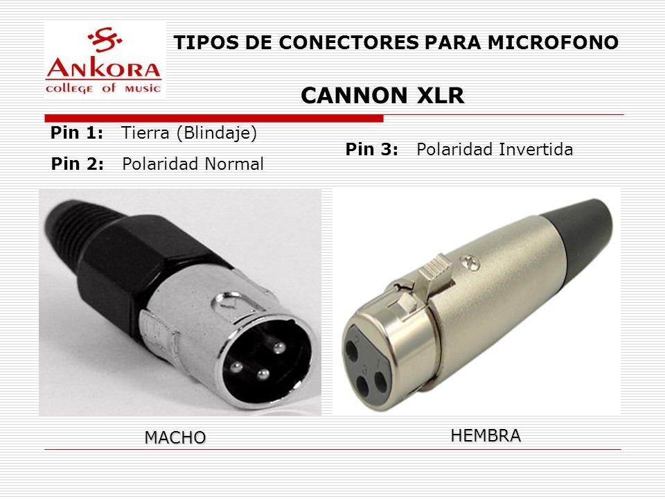 CANNON XLR TIPOS DE CONECTORES PARA MICROFONO Pin 1: Tierra (Blindaje)
