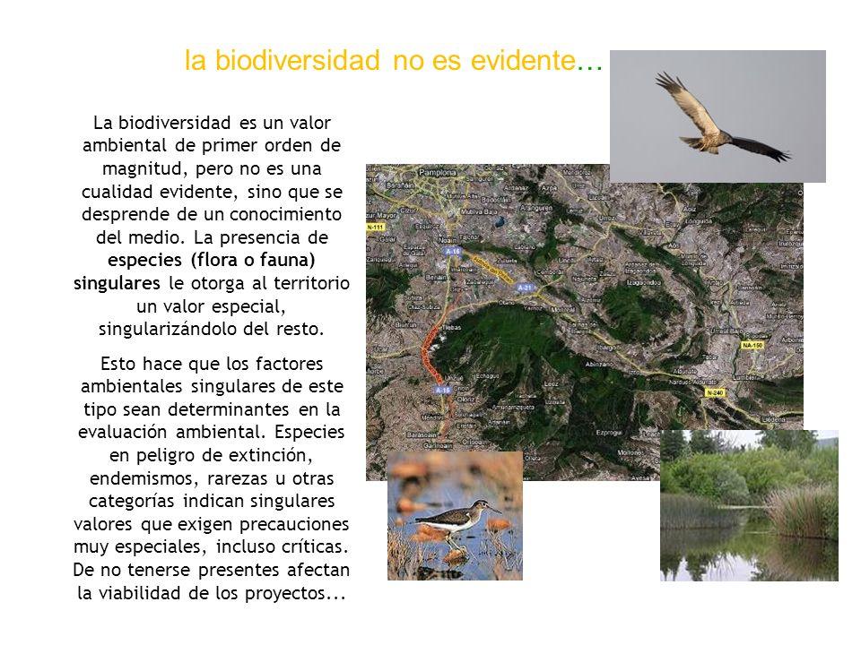 la biodiversidad no es evidente…