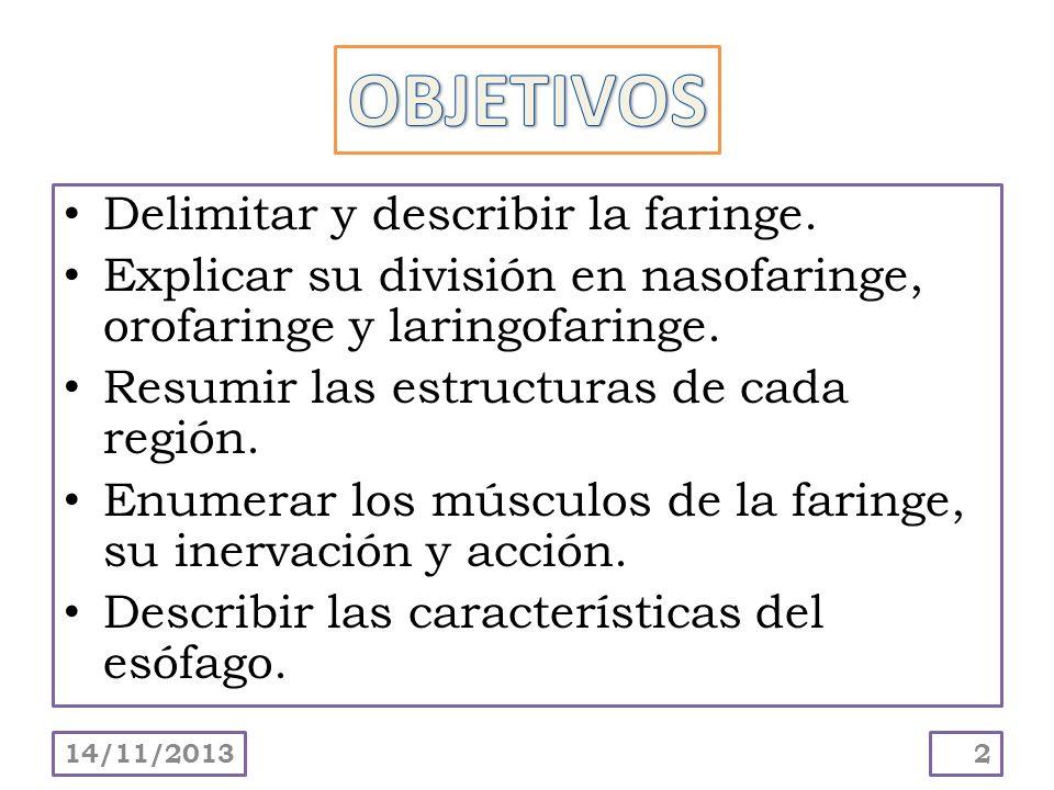 OBJETIVOS Delimitar y describir la faringe.