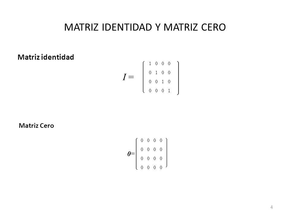 MATRIZ IDENTIDAD Y MATRIZ CERO