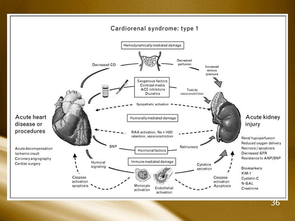 Sme Cardiorrenal 1, 2, 3, 4