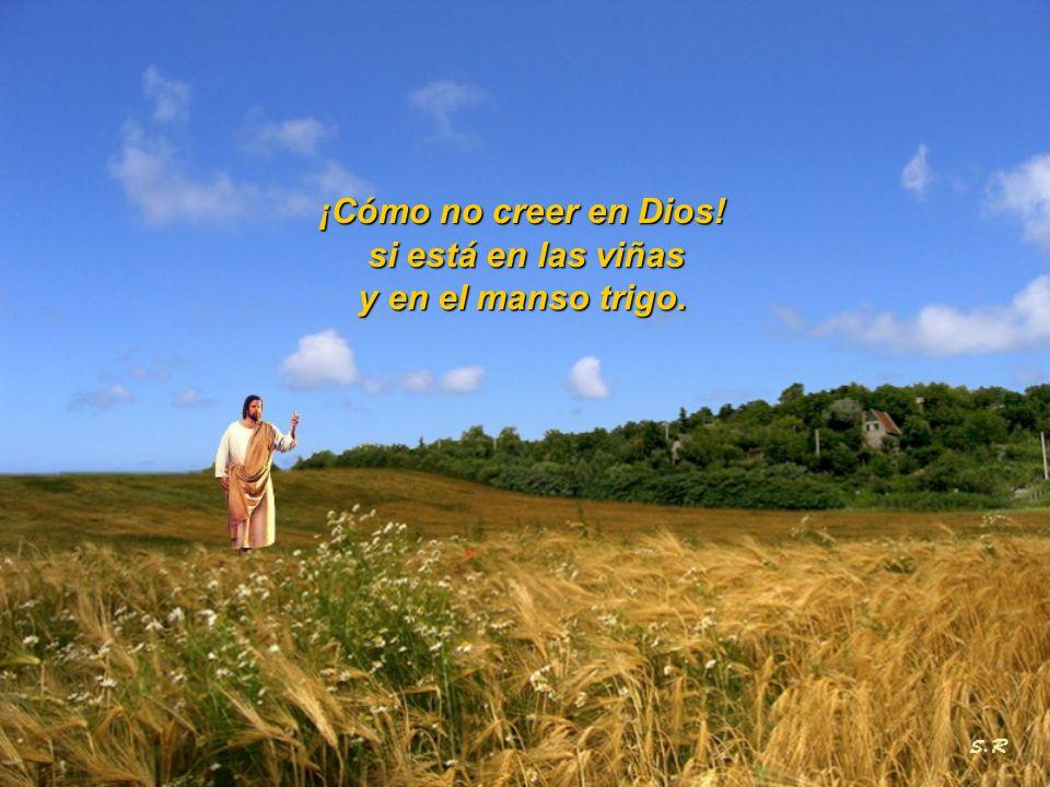 ¡Cómo no creer en Dios! si está en las viñas y en el manso trigo.