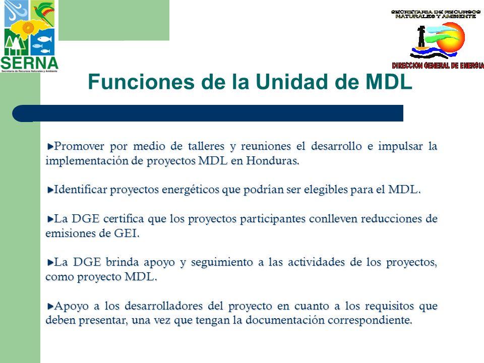 Funciones de la Unidad de MDL
