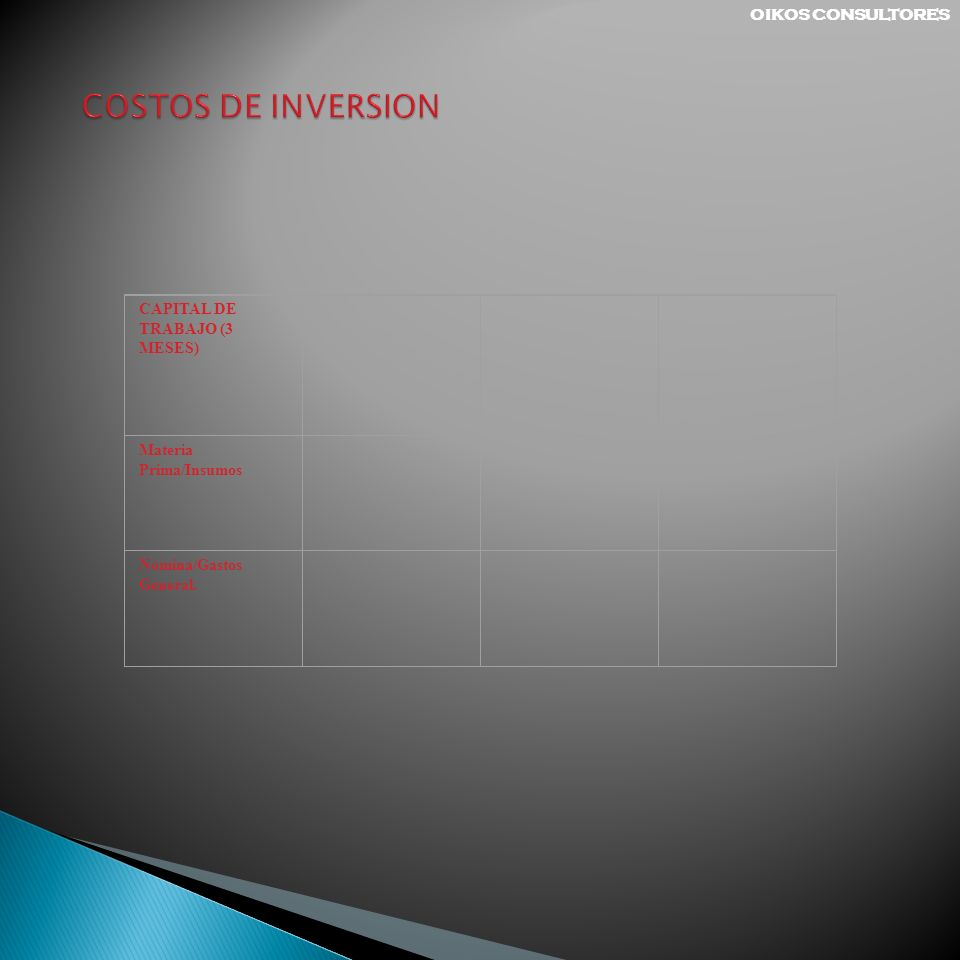 COSTOS DE INVERSION OIKOS CONSULTORES CAPITAL DE TRABAJO (3 MESES)