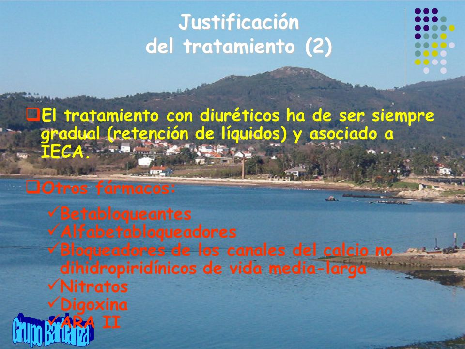 Justificación del tratamiento (2)