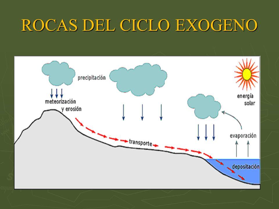 ROCAS DEL CICLO EXOGENO