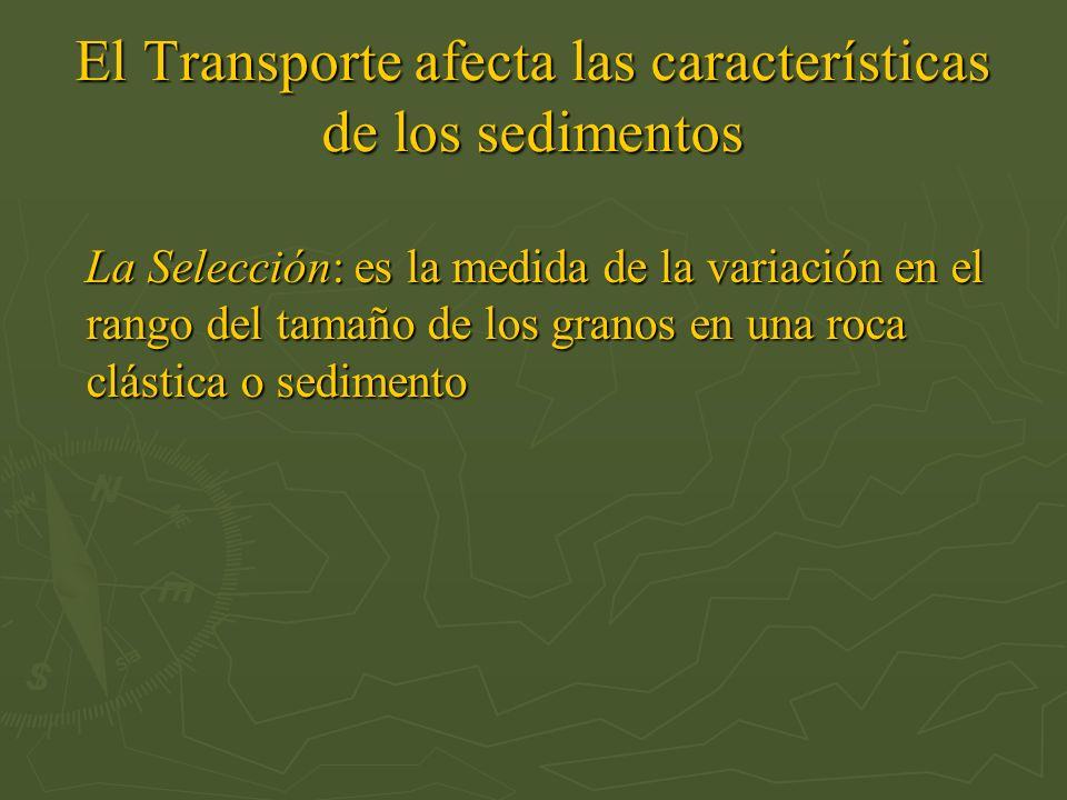 El Transporte afecta las características de los sedimentos