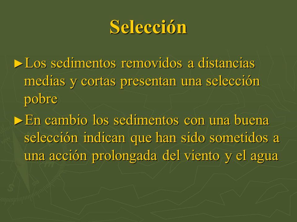 Selección Los sedimentos removidos a distancias medias y cortas presentan una selección pobre.