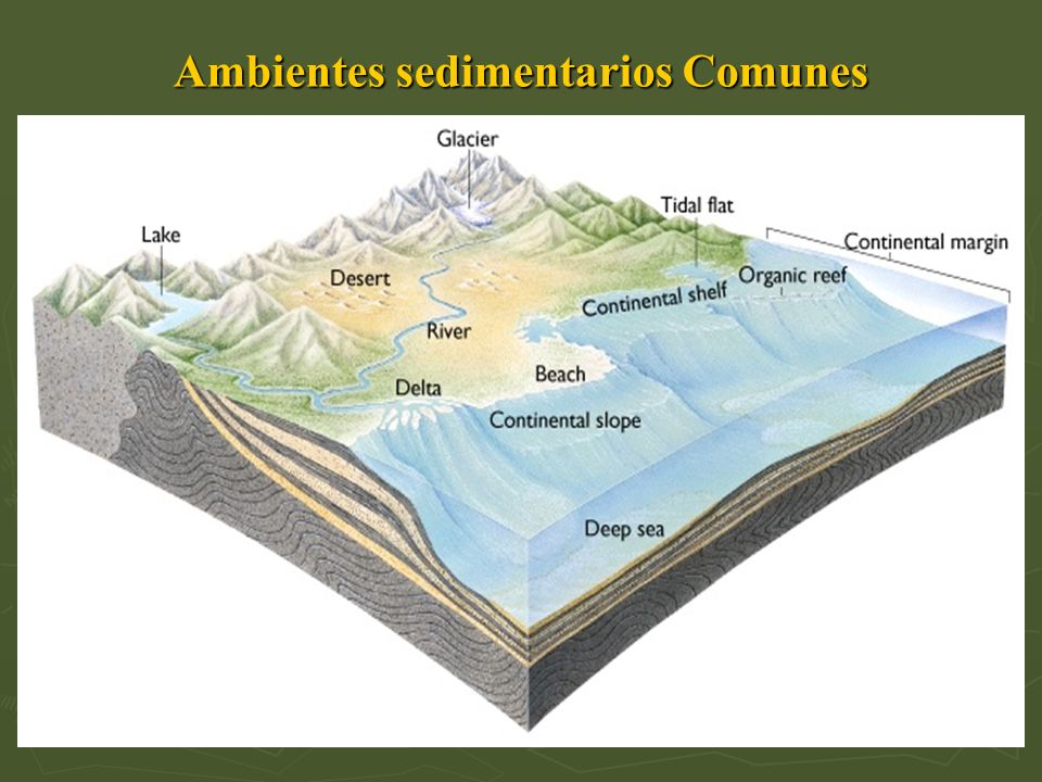 Ambientes sedimentarios Comunes