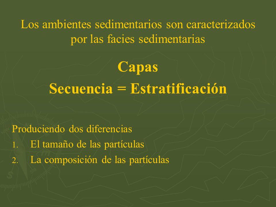 Secuencia = Estratificación