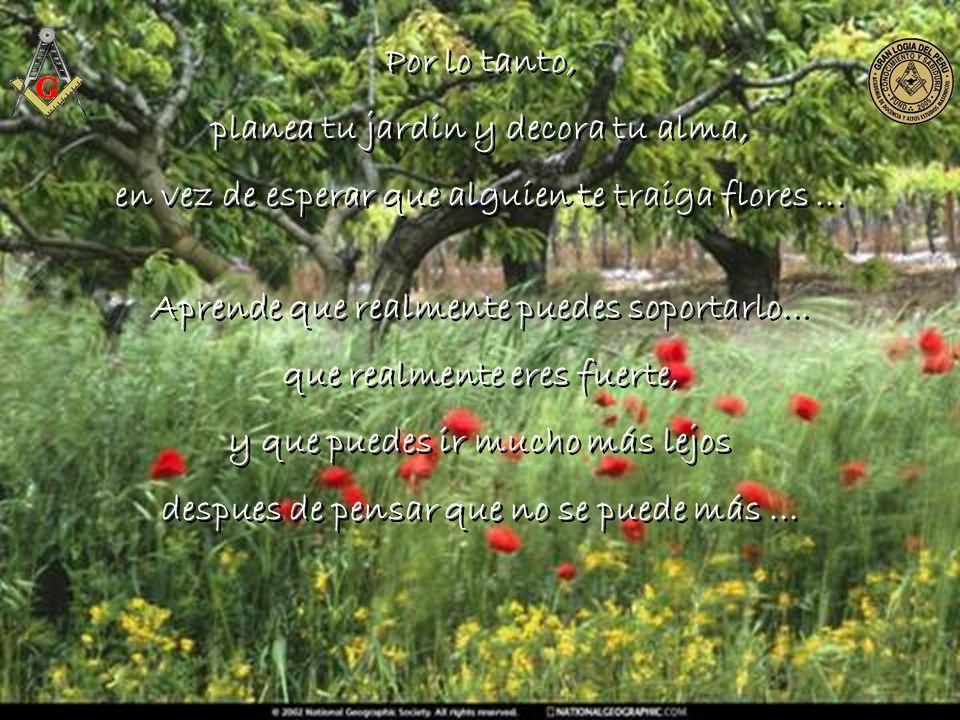 planea tu jardin y decora tu alma,