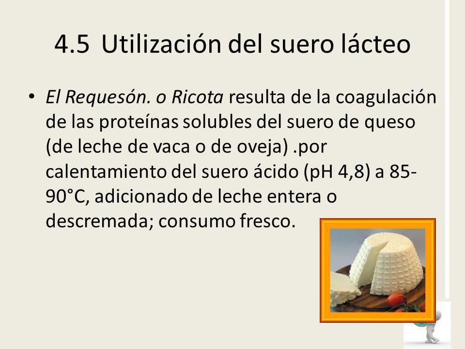 4.5 Utilización del suero lácteo