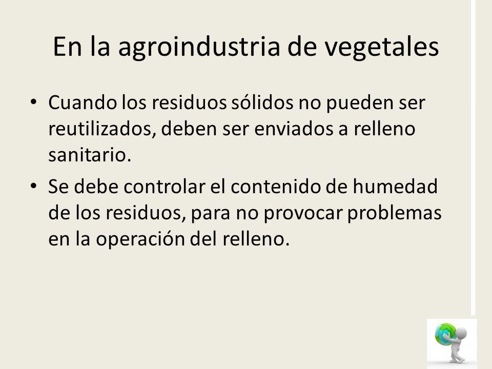 En la agroindustria de vegetales
