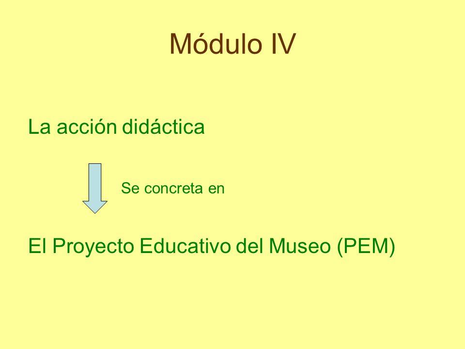 Módulo IV La acción didáctica Se concreta en