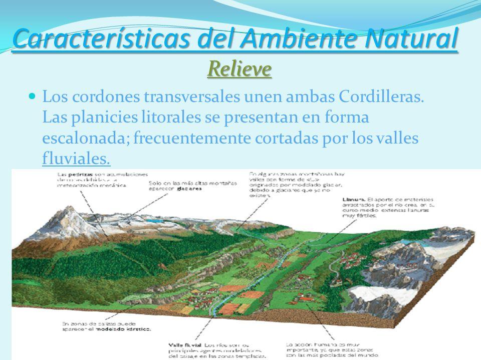 Características del Ambiente Natural