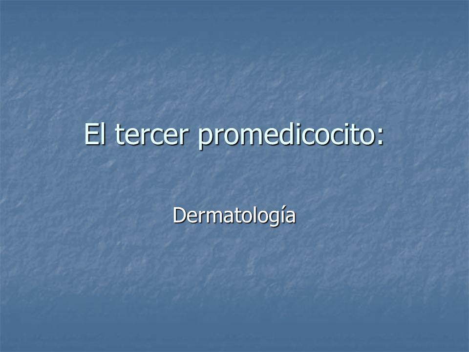 El tercer promedicocito: