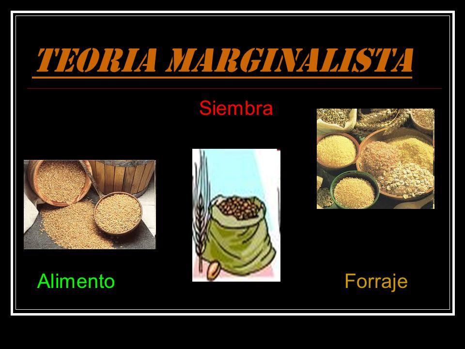 TEORIA MARGINALISTA Siembra Alimento Forraje