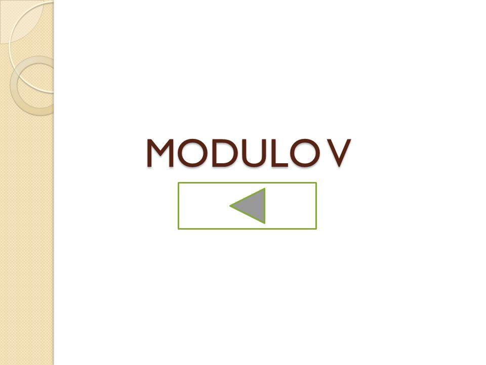 MODULO V