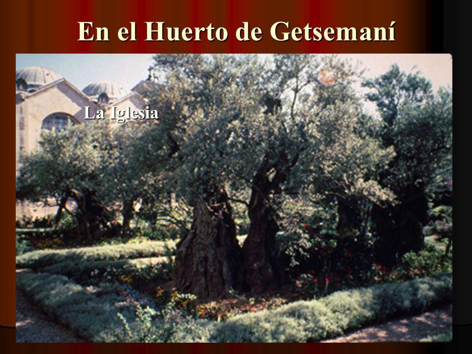 En el Huerto de Getsemaní