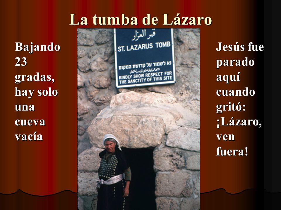 La tumba de Lázaro Bajando 23 gradas, hay solo una cueva vacía