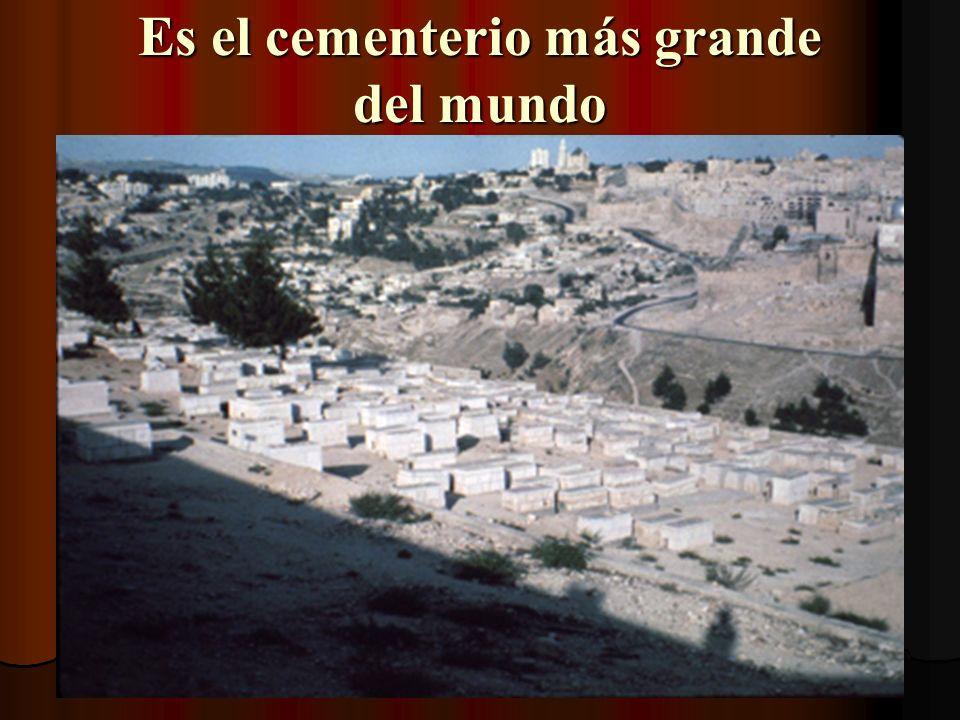 Es el cementerio más grande del mundo