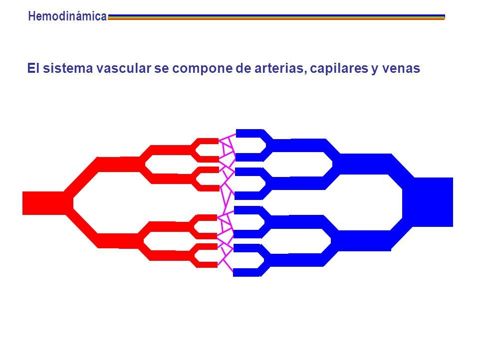 Hemodinámica El sistema vascular se compone de arterias, capilares y venas