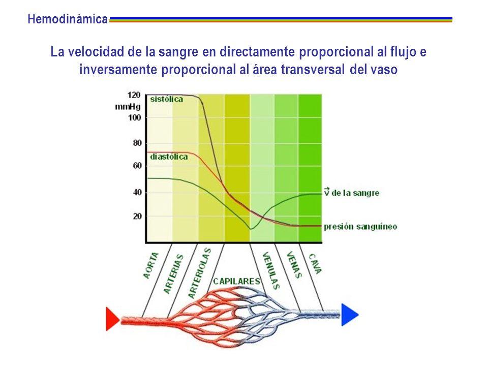 HemodinámicaLa velocidad de la sangre en directamente proporcional al flujo e inversamente proporcional al área transversal del vaso.